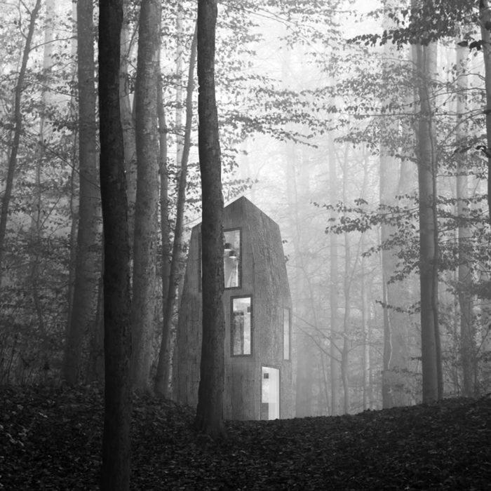 projekt-waldhaus-im-wendland-schoenbornschmitz-architekten